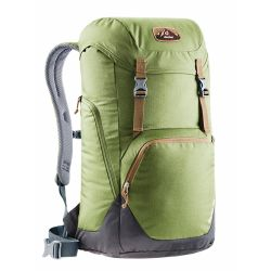 Deuter Walker 24 Pine Graphite